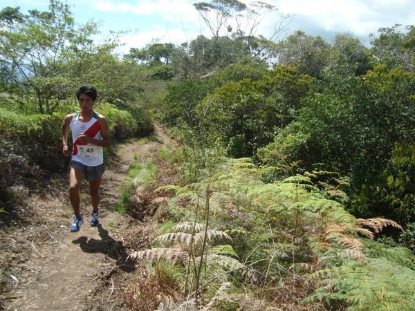 the amazon marathon peru