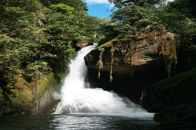 waterfall birding costa rica